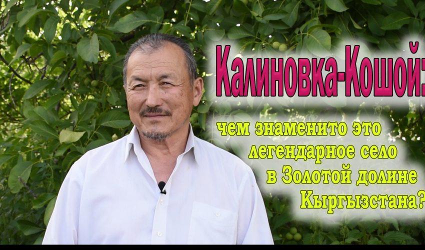 Калиновка-Кошой: чем знаменито это село в Золотой долине? (ВИДЕО)
