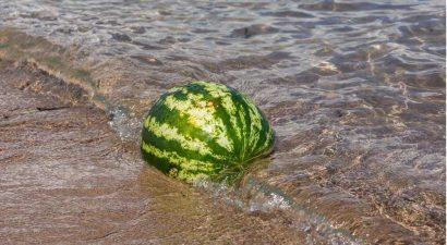 3 августа National Watermelon Day: лопайте от пуза сладкие арбузы!