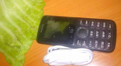 В Кыргызстане телефоны растут прямо внутри… капусты! Сенсацию обнаружили сотрудники ГСИН
