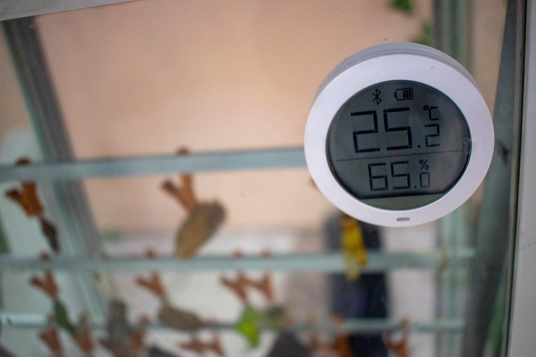 Очень важна определенная температура помещения, в котором они находятся…