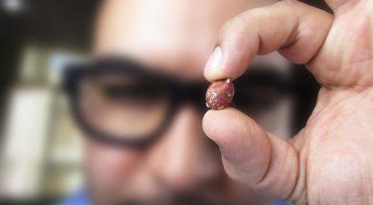 Кыргызскому арахису сибиряки предпочли земляные орехи из США. А как же наше партнерство в ЕАЭС?