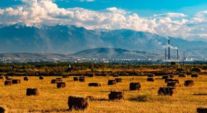 Состояние продовольственной безопасности в Кыргызстане